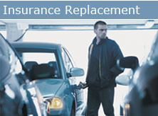 insurance_bug